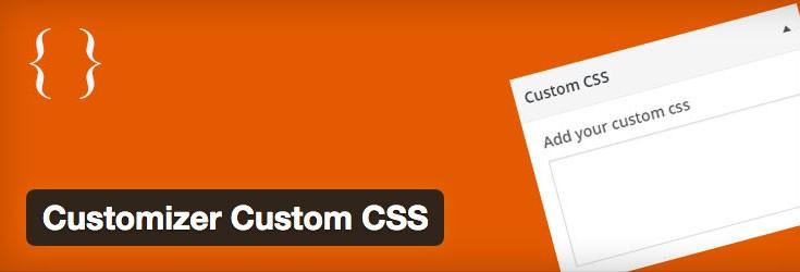 customizer-custom-css