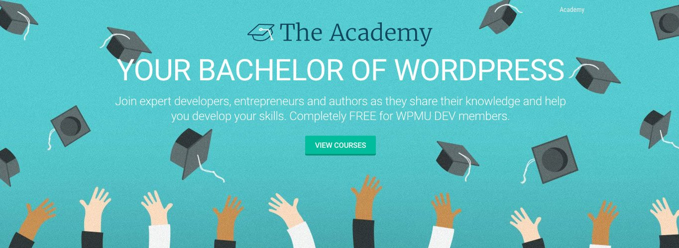Join The Academy and sharpen your WordPress skills.