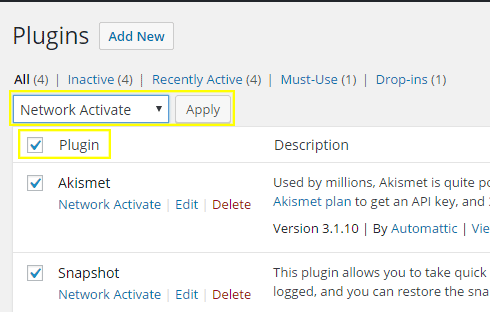 "The plugins page with the plugin checkbox clicked and ""Network Activate"" selected."