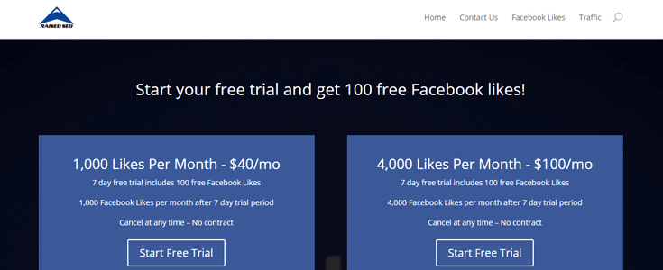 "A spam site where visitors can buy Facebook ""likes."""