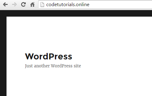 WordPress website live on the web