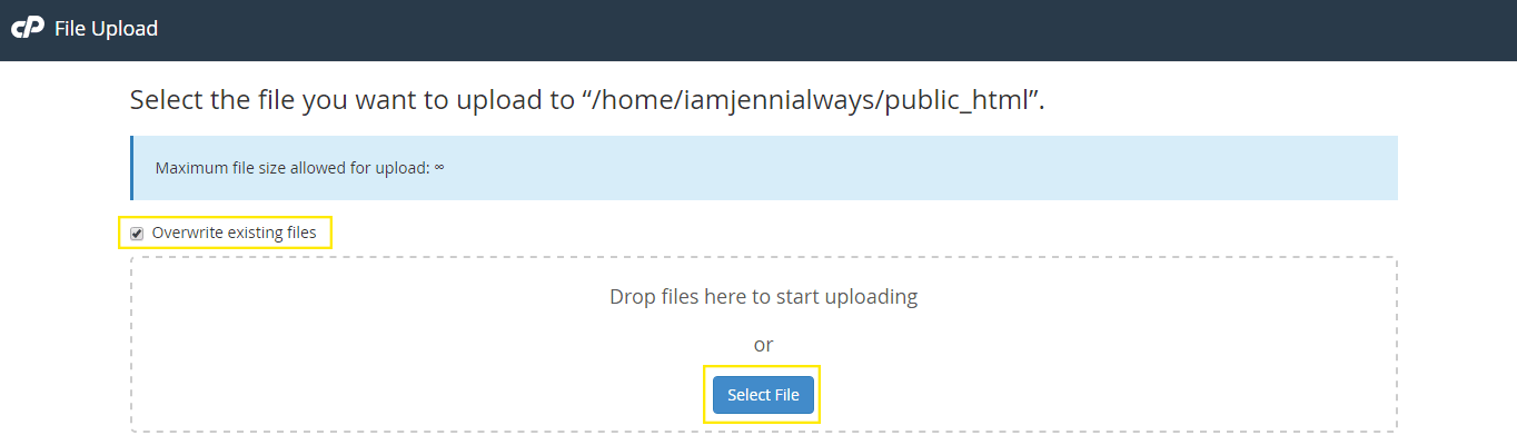 The file upload page.