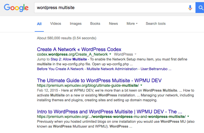 Our Ultimate Guide to WordPress Multisite ranks second on Google search behind WordPress.org's Codex entry for Multisite.