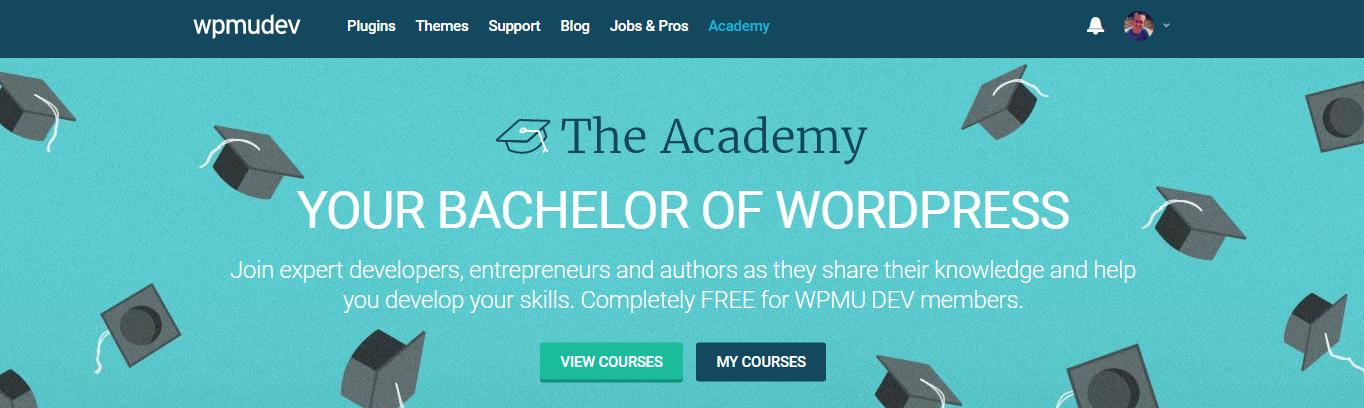 torrent ultimate wordpress plugin course
