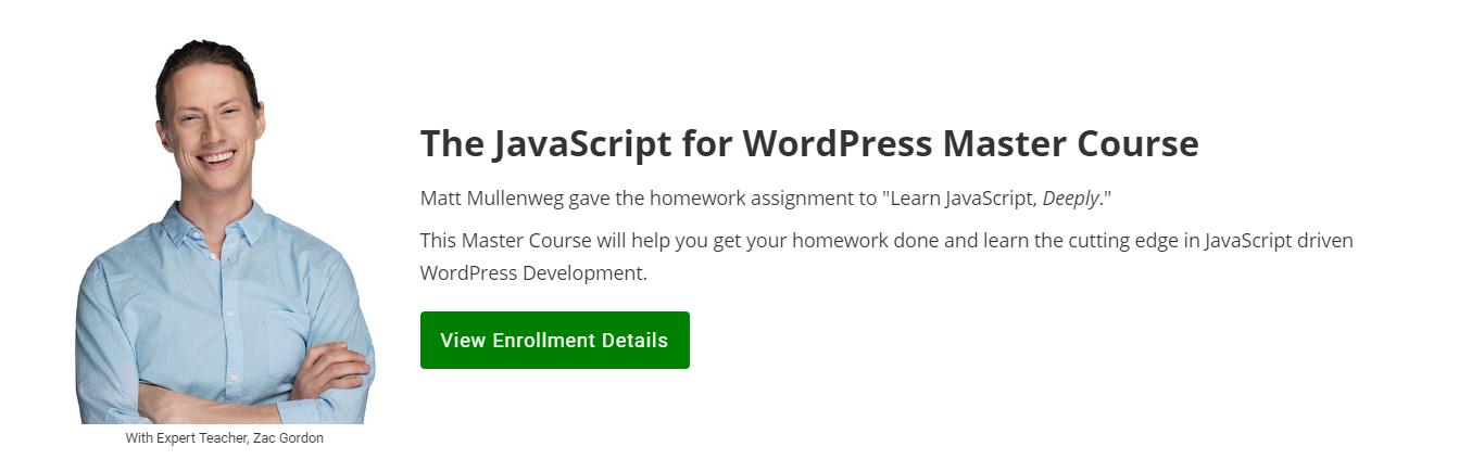 javascript for wp website screenshot