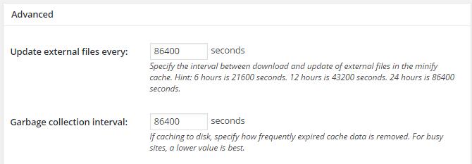 screenshot of advanced section of minify menu in w3tc
