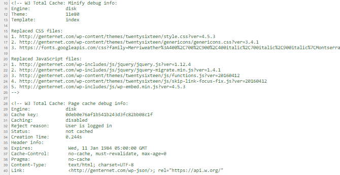 screenshot of debug info added to the end of an html document