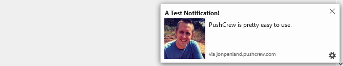 screenshot of pushcrew notification