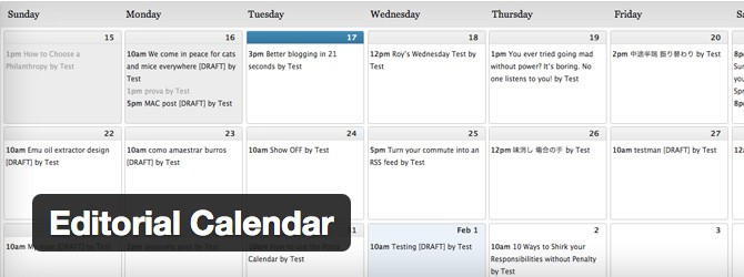 We use the Editorial Calendar plugin to organize the WPMU DEV Blog.