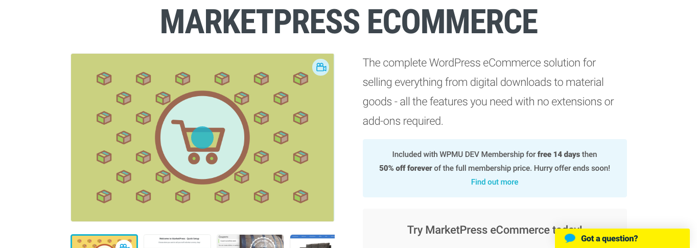 If you've got marketing skills, a plugin like MarketPress could help you sell online