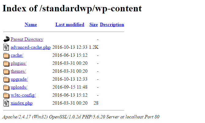 A screenshot showing a listing of files in wp-content