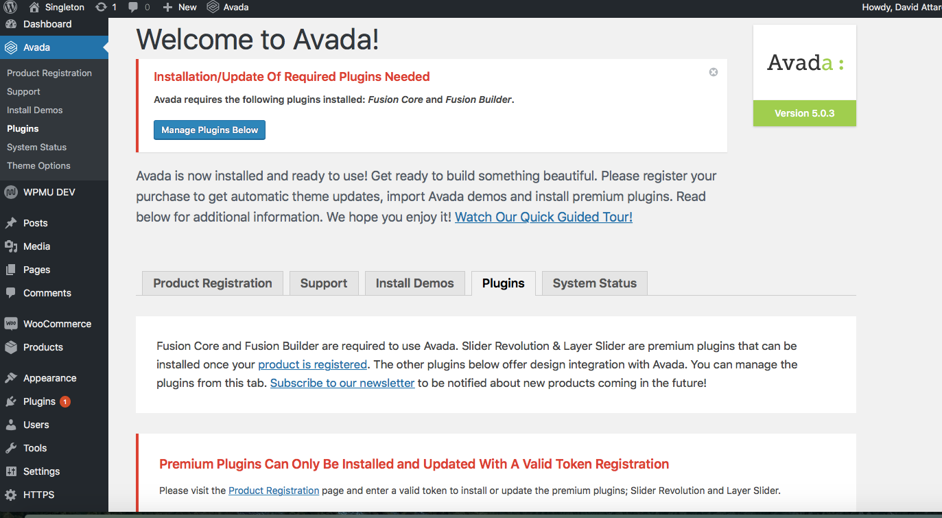 Welcome to Avada plugins section
