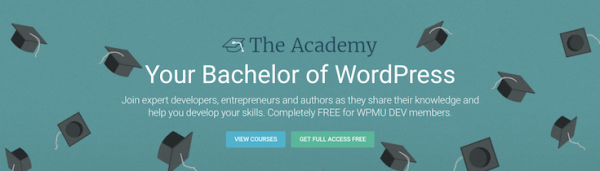 WPMU DEV ticked this off its bucket list last year when it launched The Academy.