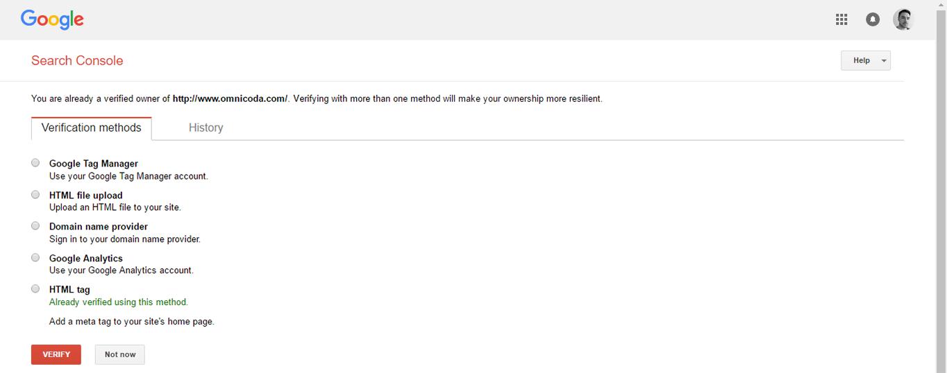 Google Search Console Verification page.