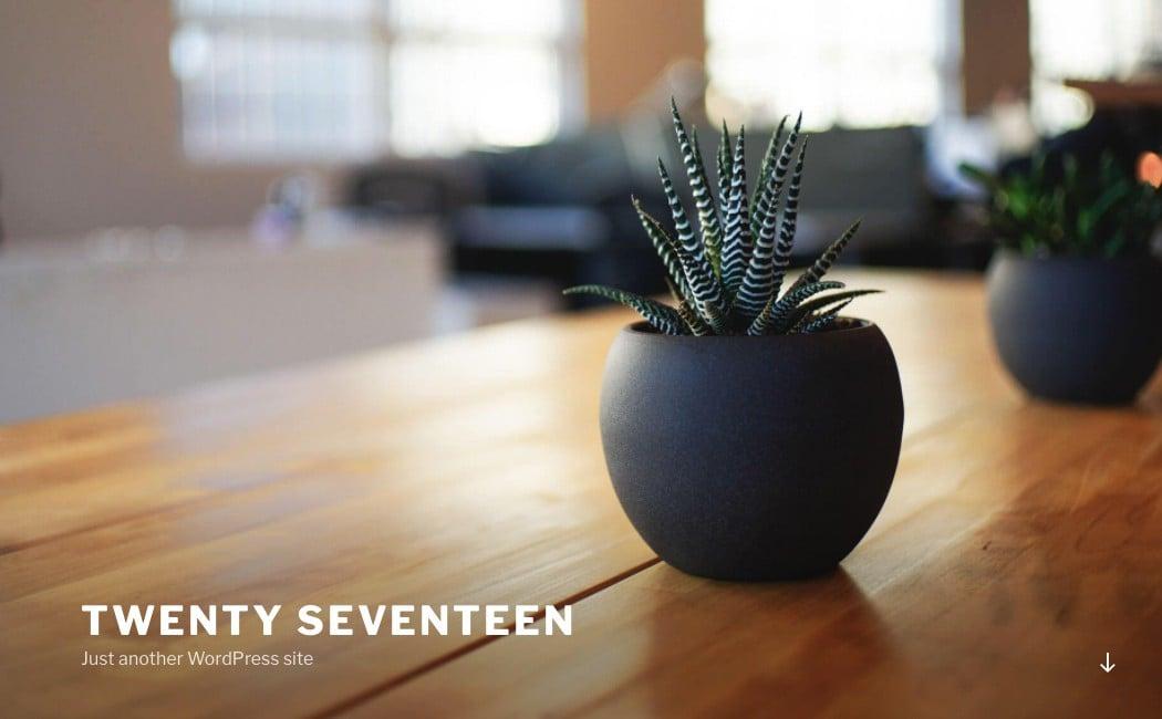 The Twenty Seventeen default WordPress theme.