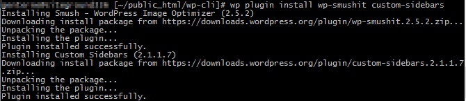 plugin installation success with wp-cli