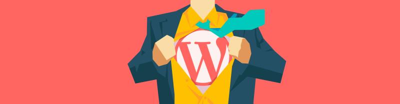 WordPress professional