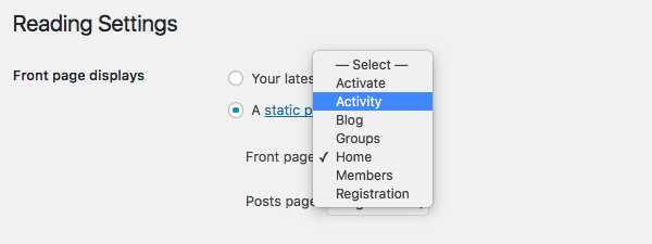 WordPress selecting a static page as the home page