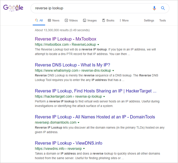 Screenshot of reverse IP lookup search results on Google.