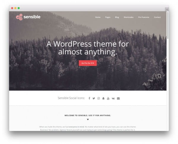 30+ Free High Quality WordPress Themes Worth Checking Out in 2017 ...