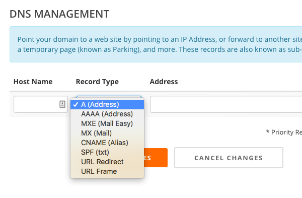 DNS editing showing options for DNS management