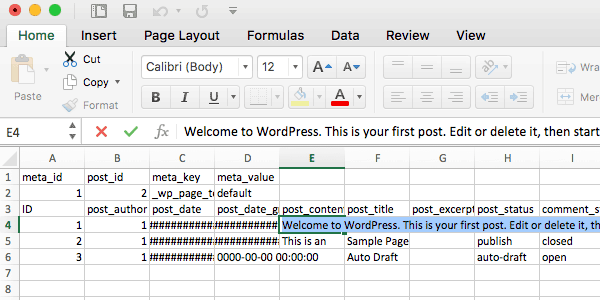 The CSV file in Excel