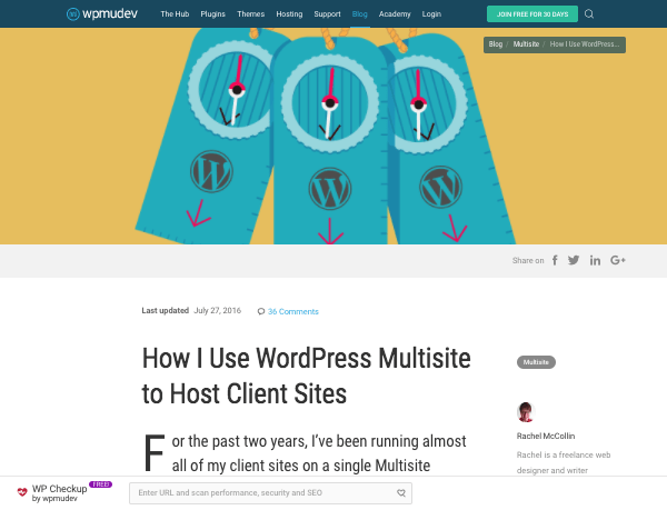 wpmu dev guide to hosting client sites with WordPress Multisite