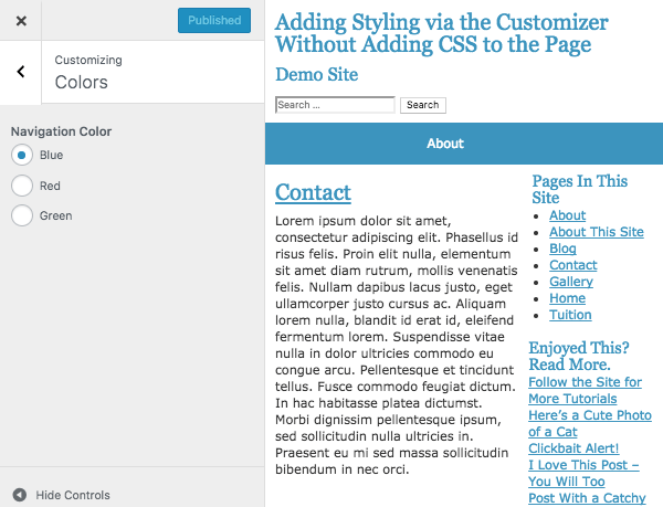The WordPress customiser with a new section and control added