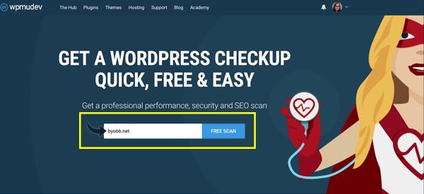 WP Checkup Tool