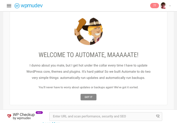 Automate on the WPMU DEV Hub