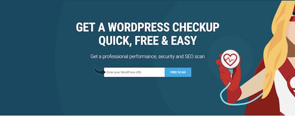 SEO Audit - WP Checkup