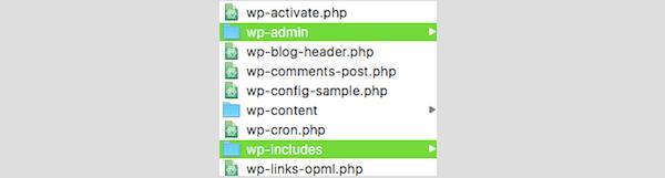 Server issues - WordPress Folders
