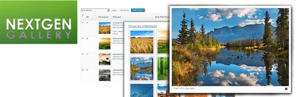 Slowest WordPress Plugins - NextGen Gallery Plugin