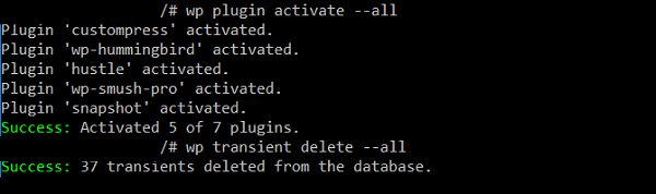 Using WP-CLI via SSH on Local