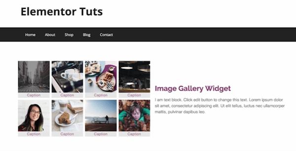 Gallery customization