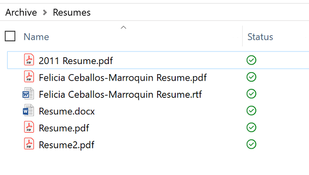 Screenshot of Resumes in File Manager