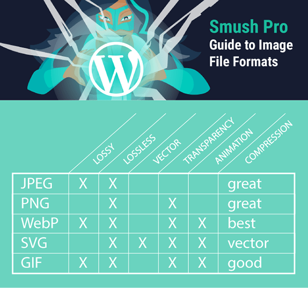 diagram summarizing capabilities for JPEG, SVG, PNG, WebP and GIF