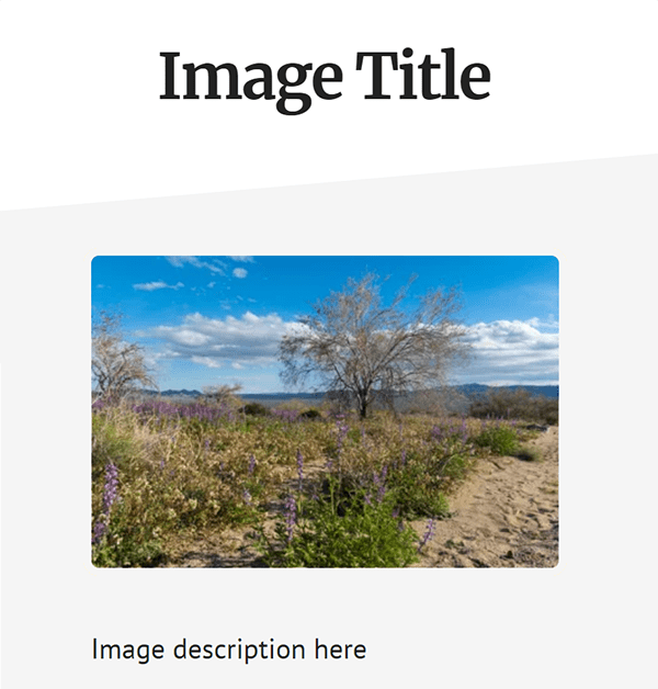 screenshot of WordPress attachment page with image title, image and image description
