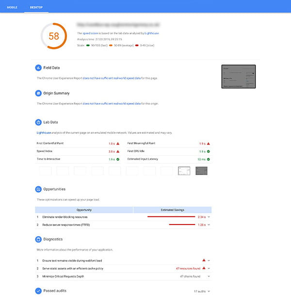 Screenshot of Google PageSpeed Insights