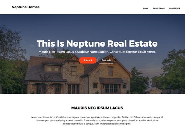 Neptune Real Estate is another great theme
