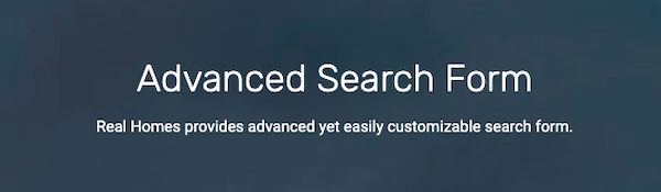 offer users an advanced search form