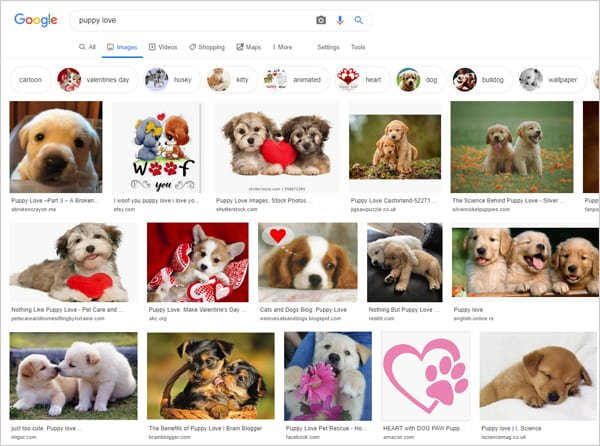 "Google images search results for keyphrase ""puppy love""."