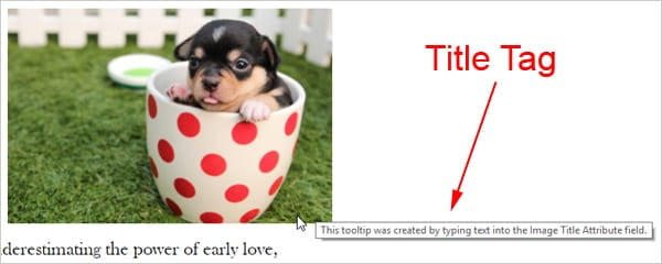 Screenshot showing a tooltip created by inputting text into the Image Title Attribute field.