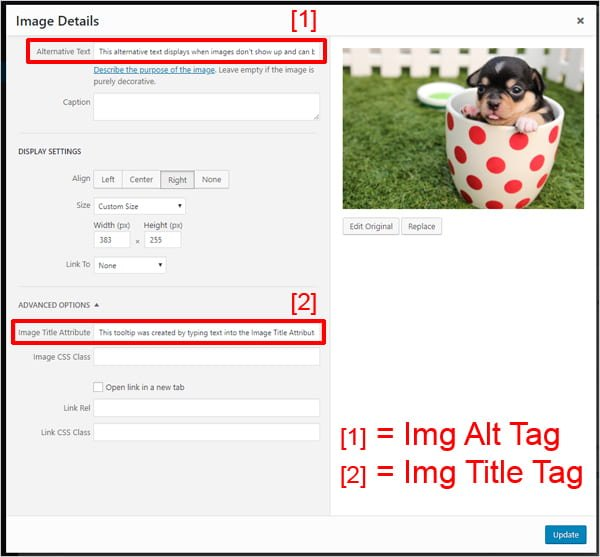 Image Details screen with Alternative Text and Image Title Attribute fields highlighted.