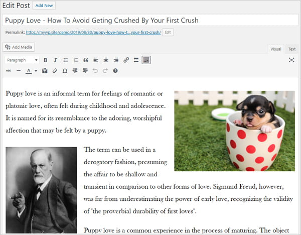 Sample post with a picture of a puppy and a photograph of Dr. Sigmund Freud.