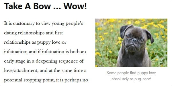Sample post with text and image of puppy.