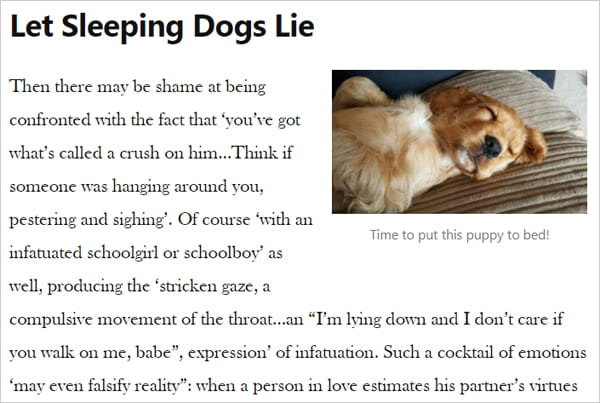 sample post image with fake text and picture of sleeping pup.