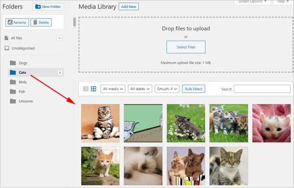 Screengrab of WordPress media library with FileBird plugin installed.