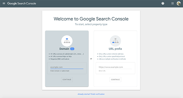 Google Search Console property type.