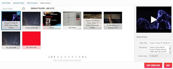 Brid Video Display example.